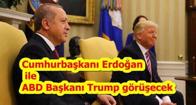 Cumhurbaşkanı Erdoğan ile ABD Başkanı Trump görüşecek