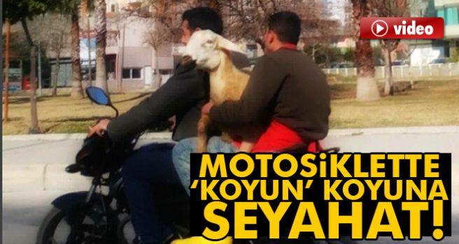KUCAKTA KOYUNLA MOTOSİKLET TURU!