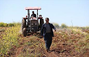 Üniversitede rektör, tarlada çiftçi