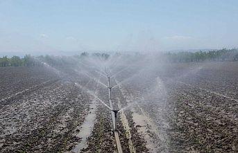 Bursa, Kocaeli ve Yalova'da 2020 sulama sezonu tamamlandı