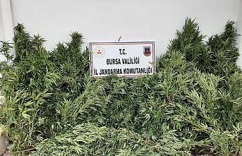 Bursa'da düzenlenen uyuşturucu operasyonunda 2 şüpheli yakalandı