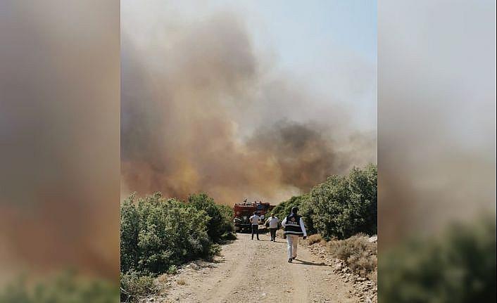 Çanakkale'nin Ezine ilçesinde ormanlık alanda çıkan yangına müdahale ediliyor