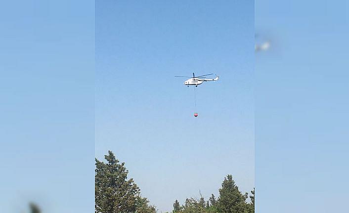 Edirne'de ormanlık alanda yangın çıktı