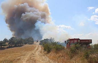GÜNCELLEME - Çanakkale'nin Bayramiç ilçesinde çıkan orman yangınına havadan ve karadan müdahale ediliyor