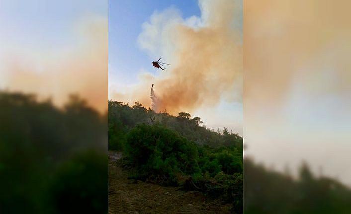 GÜNCELLEME - Çanakkale'nin Ezine ilçesinde çıkan orman yangını kontrol altına alındı