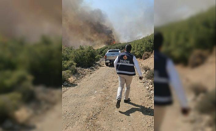 GÜNCELLEME - Çanakkale'nin Ezine ilçesindeki orman yangını söndürüldü