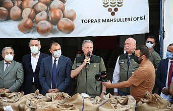 TMO Genel Müdürü Ahmet Güldal'dan fındık alımı değerlendirmesi: