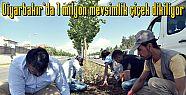Diyarbakır'da 1 milyon mevsimlik çiçek...