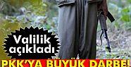 Şırnak'ta 15 PKK'lı etkisiz hale getirildi