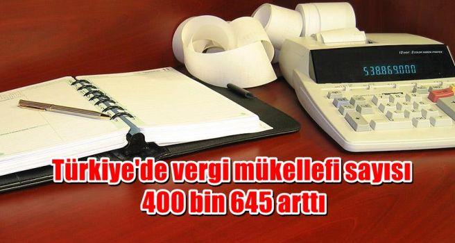 Türkiye'de vergi mükellefi sayısı 400 bin 645 arttı