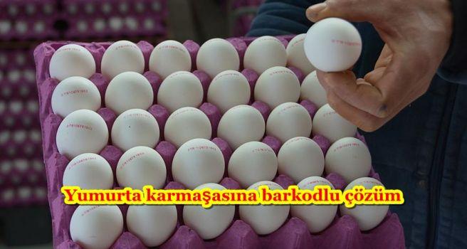 Yumurta karmaşasına barkodlu çözüm