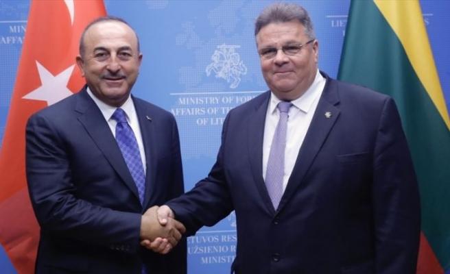 Litvanya Dışişleri Bakanı Linkevicius: Türkiye'yi çok önemli bir müttefik olarak görüyoruz