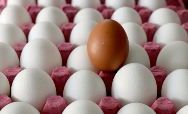 Yumurta fiyatından ne üretici ne de tüketici memnun