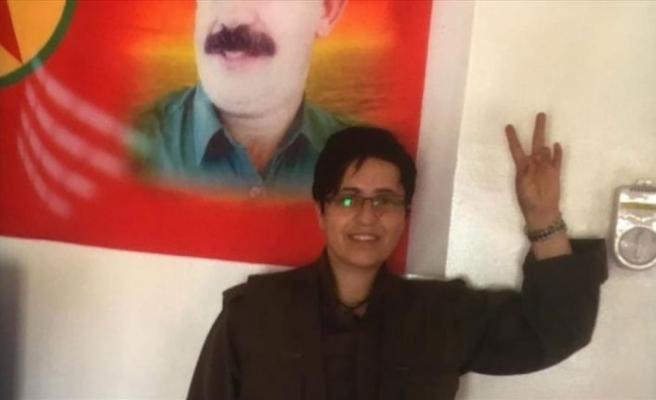 PKK'lı terörist Devlet Aslan, Batman'da yakalandı
