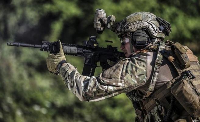 Türk Silahlı Kuvvetlerince 12 terörist etkisiz hale getirildi