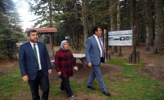 Uludağ'ın 4 Noktasına Endemik Park
