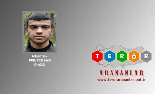 Gri listedeki terörist Şırnak'ta teslim oldu