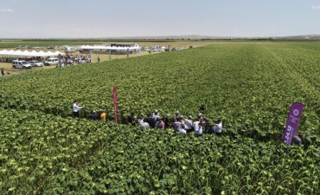 Bilinçli tarım verimi yükseltti
