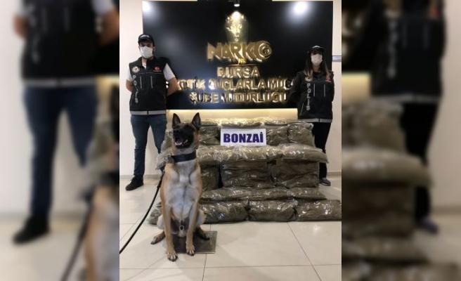 Bursa'da uyuşturucu operasyonunda bir zanlı tutuklandı