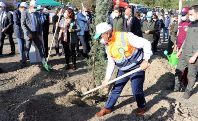 """Batı Karadeniz ve Doğu Marmara'da """"Milli Ağaçlandırma Günü"""" etkinlikleri düzenlendi"""