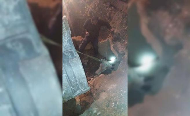 Menfezde sıkışan 4 inek itfaiye ekiplerince kurtarıldı
