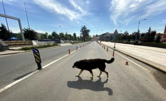 """Doğu Marmara ve Batı Karadeniz'de """"tam kapanma"""" sürecinin altıncı gününde sessizlik hakim"""