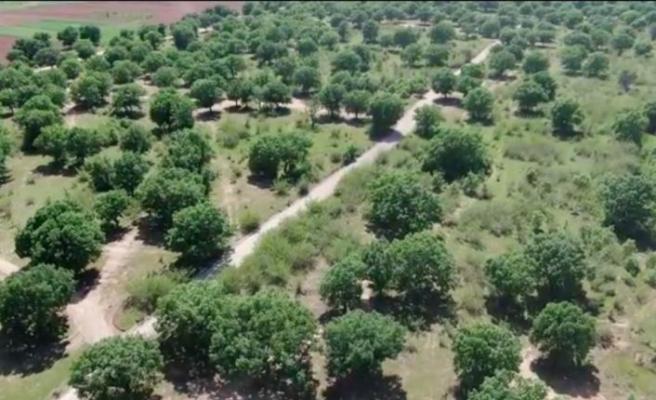 Kırklareli'nde tam kapanma sürecinde kuralları ihlal edenler drone ile yakalanıyor