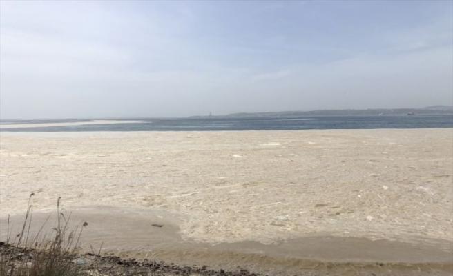 """Yalova Altınova sahilinde """"deniz salyası"""" nedeniyle beyaz tabaka oluştu"""