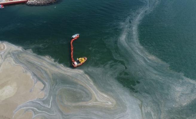 Tekirdağ'da rüzgarla yeniden kıyıda biriken müsilajı temizleme çalışmaları devam ediyor