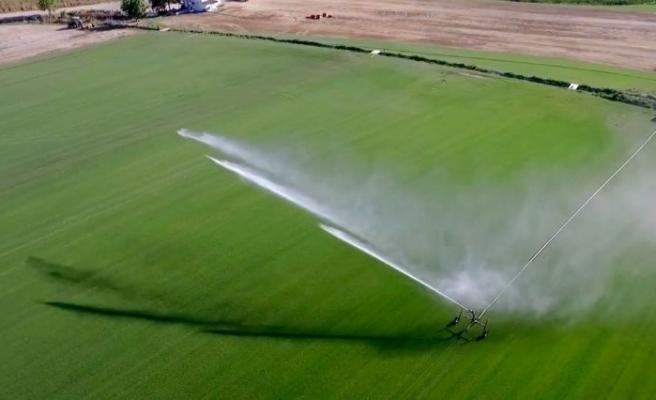Trakya'da bu yıl 695 bin 720 dekar tarım arazisi suyla buluşacak