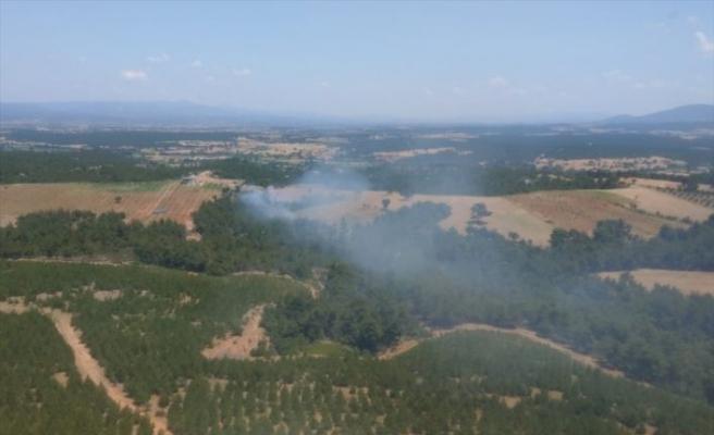 Çanakkale'nin Ezine ilçesindeki ormanlık alanda çıkan yangına müdahale ediliyor