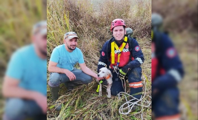 Sakarya'da kuyuya düşen av köpeğini itfaiye ekipleri kurtardı