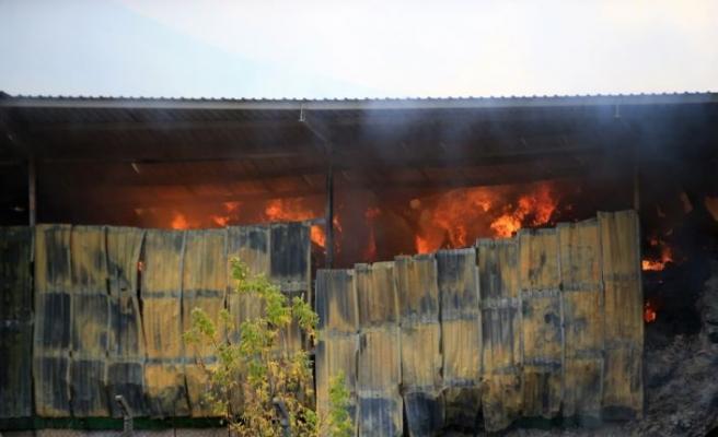 Kırklareli'nde besi çiftliğindeki yangını söndürme çalışmaları sürüyor