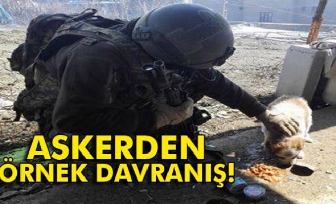 Askerden örnek davranış: Kumanyasını sokak köpeğiyle paylaştı