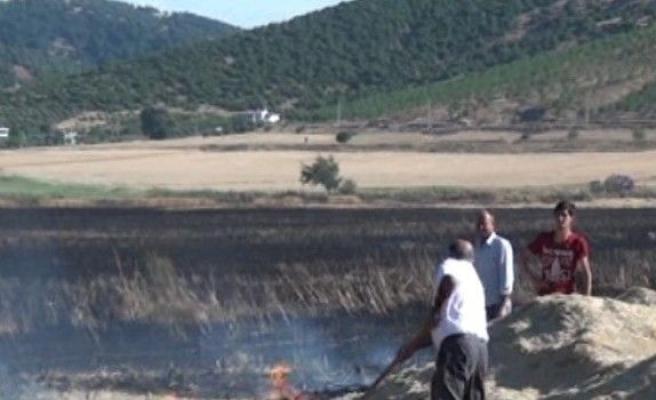 Bin Dönümlük Buğday Tarlası Kül Oldu