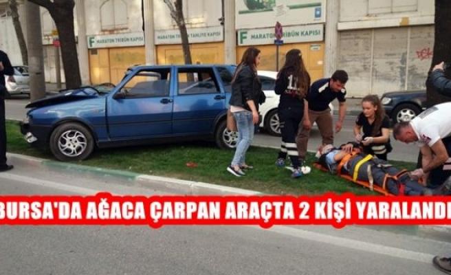 Bursa'da Ağacı Çarpan Araçta 2 Kişi Yaralandı