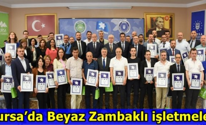 Bursa'da Beyaz Zambaklı işletmeler
