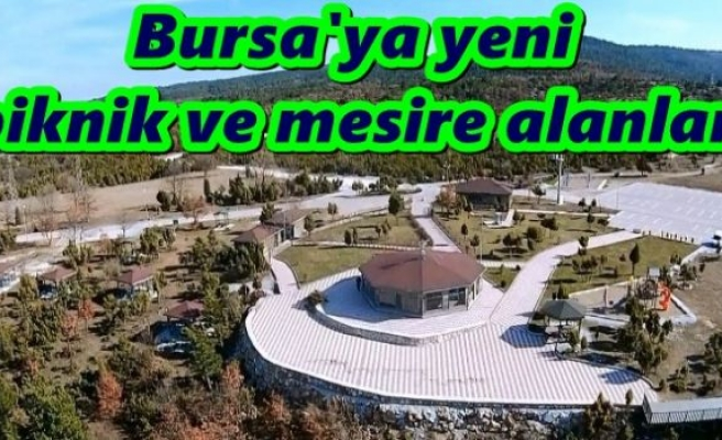 Bursa'ya yeni piknik ve mesire alanları