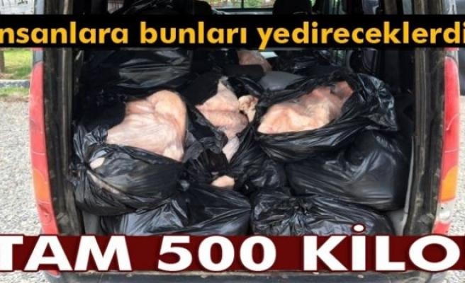 Diyarbakır'da 500 kilo kaçak et yakalandı
