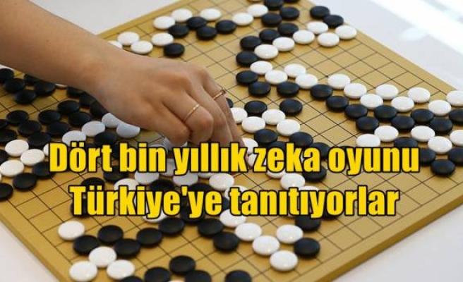 Dört bin yıllık zeka oyunu Türkiye'ye tanıtıyorlar