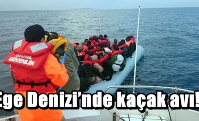 Ege Denizi'nde kaçak avı!