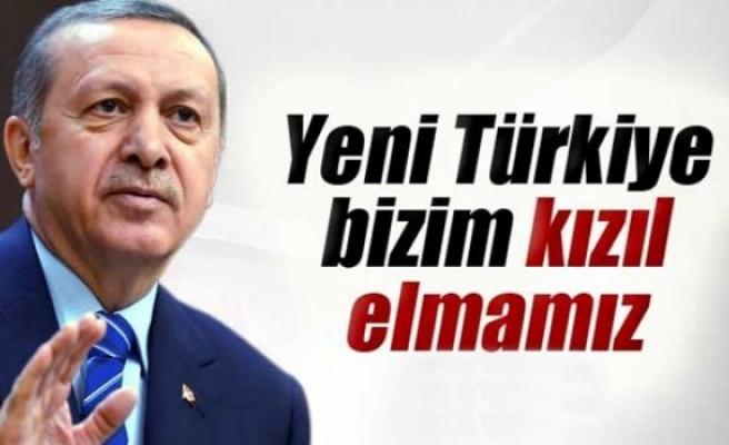 Erdoğan: 'Yeni Türkiye bizim 'kızıl elmamız'