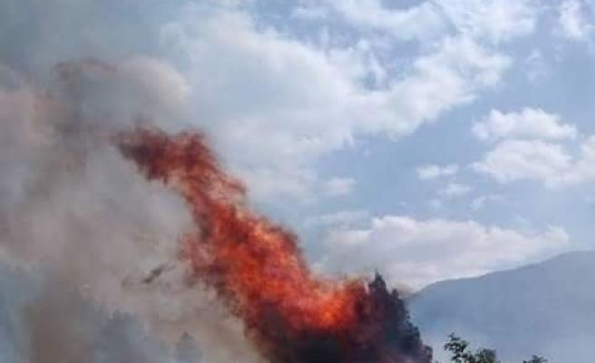 Kastamonu'da 4 samanlık ve 50 dönümlük ekili tarım arazisi yandı