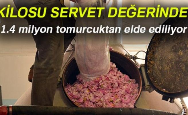 KİLOSU SERVET DEĞERİNDE!