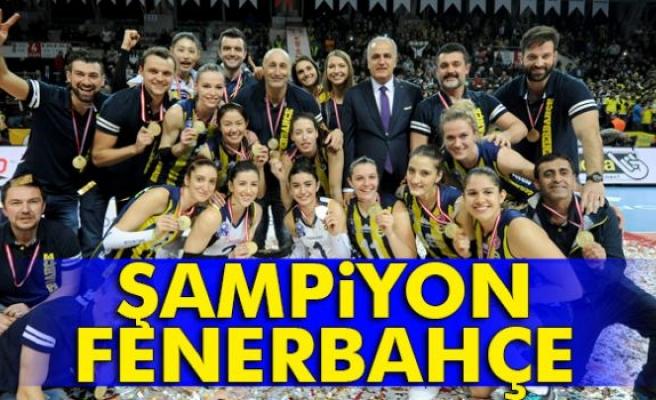 Kupa Voley'de şampiyon Fenerbahçe