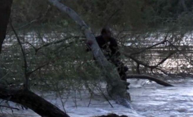 Nehre Atladı, Dallara Tutunarak Kurtarılmayı Bekledi