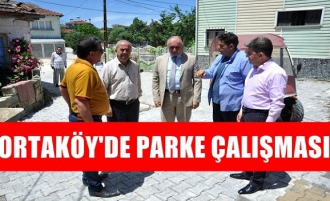 ORTAKÖY'DE PARKE ÇALIŞMASI