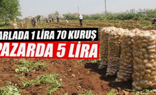 Patates tarlada 1 lira 70 kuruş pazarda 5 lira
