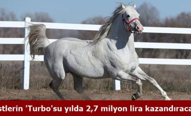 Pistlerin 'Turbo'su yılda 2,7 milyon lira kazandıracak