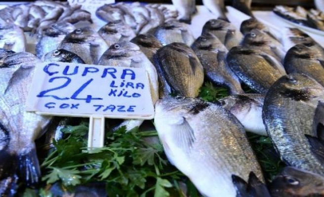 Ramazan'da Balıkçılar Sinek Avlıyor!